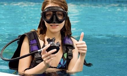Pisces School of Dive