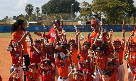 Miami Tigers Baseball Accademy