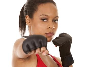 Florida Martial Art and Fitness Center