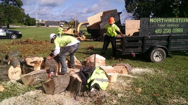 Northwestern Tree Service and Landscaping
