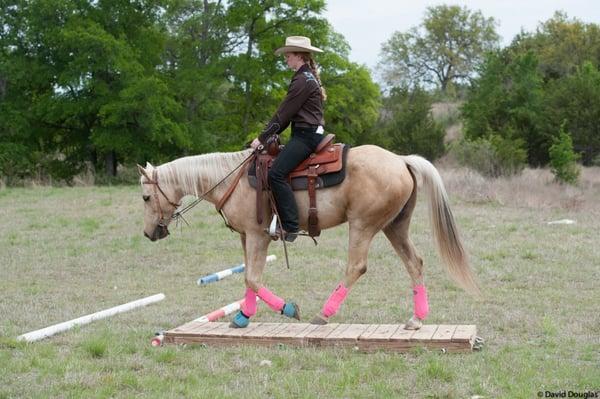 Healing Horse Ranch