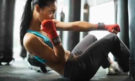 Kickboxing Seekonk