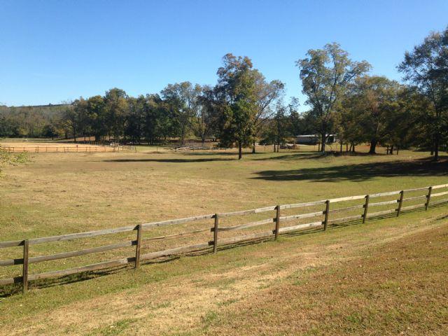 Shelby Oaks Farm