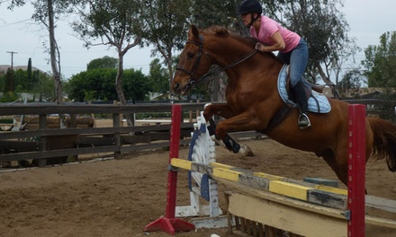 Norco Equestrian Academy