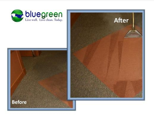 Bluegreen Carpet & Tile Cleaning