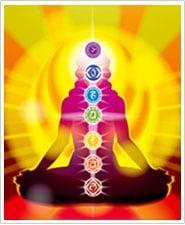Raj Yoga Meditation Astrology Vastu & Reiki