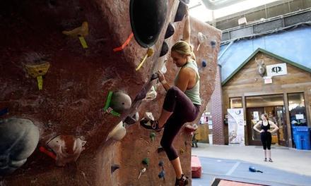 MetroRock Indoor Climbing
