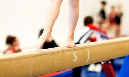 Michigan Academy Of Gymnastics