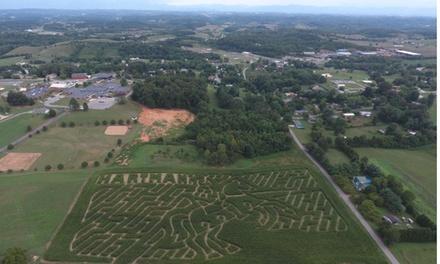 Hartman's Corn Maze