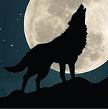 Wolf Moon Wellness