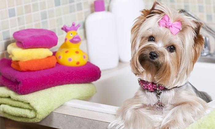 Uptown Pet Salons