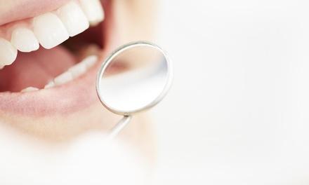 Land O Lakes Dental Care