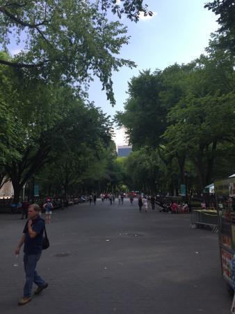 Peter Pen Tours of Central Park
