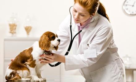 Family Pet Hospital