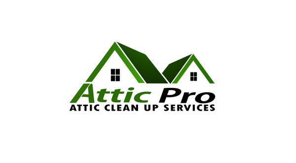 Attic Pro