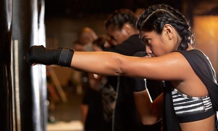 Fitness Kickboxing America - South Carolina