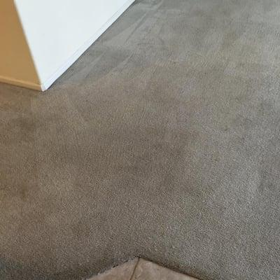 EverLush Cleaning Services