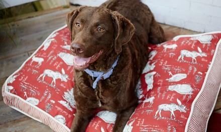 Pets First Wellness Center