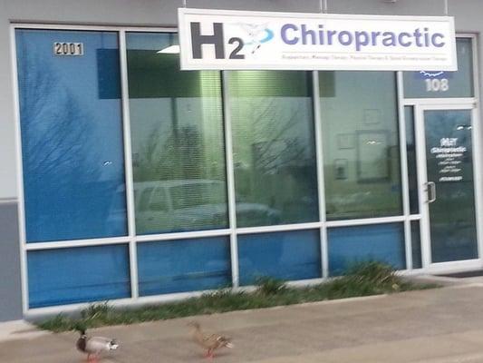H2 Chiropractic