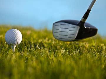 David McDaniel Golf