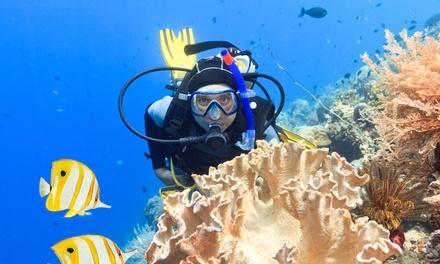Aloha Scuba Dive LLC