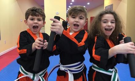 Little Tigers Martial Arts Program