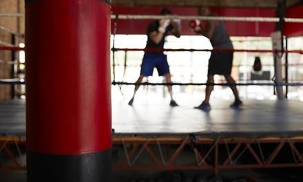 Spartan Boxing Club