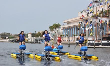 Tampa Bay Water Bike Co.