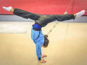 Elite Gymnastics and Cheer