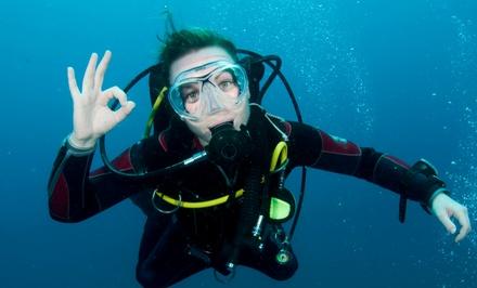 Southeastern Divers Inc.