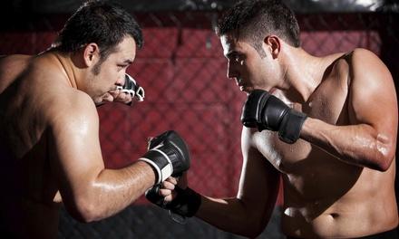 IJKDC Training @ Cube Self Defense & Fitness Studio
