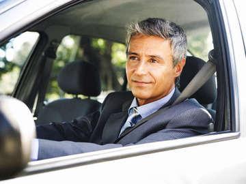 Comedy Traffic/Driving School