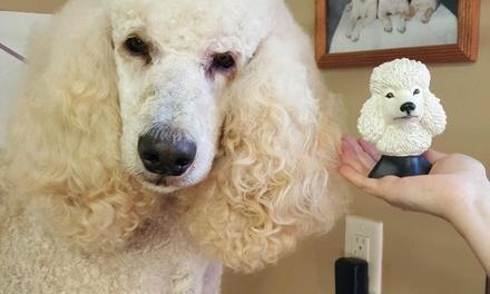 Kim's Dog & Cat Grooming