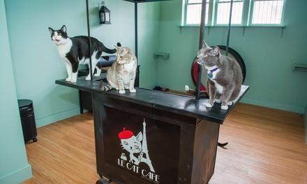 Le Cat Cafe