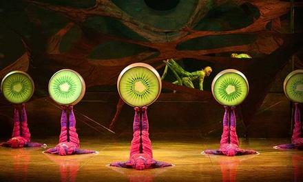 """Cirque du Soleil: """"OVO"""""""