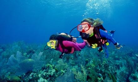 Try Scuba Diving