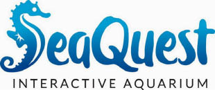 SeaQuest Interactive Aquarium | Layton, Utah