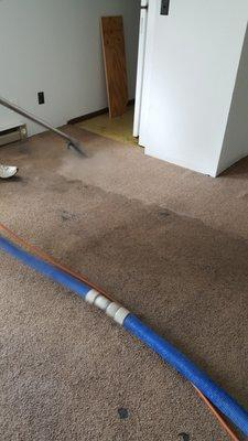 National Carpet Clean